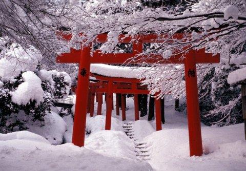 how to build a torii