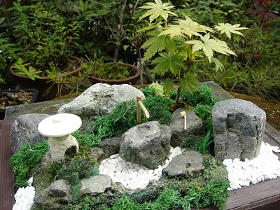 Jardins zen miniatures japon passion de sylv1 for Comment faire un jardin japonais miniature