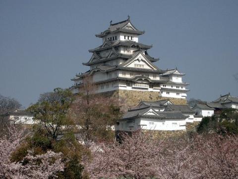 Château Himeji et cerisierswikipédia